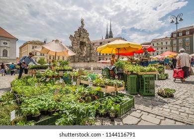 Brno, Czech Republic - june, 2018: vegetable market near Parnas Fountain - Brno, Moravia, Czech Republic, Europe