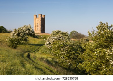 BROADWAY, WORCESTERSHIRE, ENGLAND - MAY 24, 2017: Broadway Tower folly amidst spring flowering Hawthorn bushes with blue sky in morning sunshine