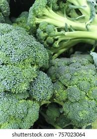 broccoli harvest. many broccolis. broccoli harvest for food textures.