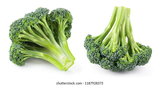 Broccoli. Broccoli isolated.