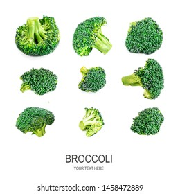 Broccoli Isolated. Creative layout made of various broccoli. Healthy Food Concept.  Flat lay.