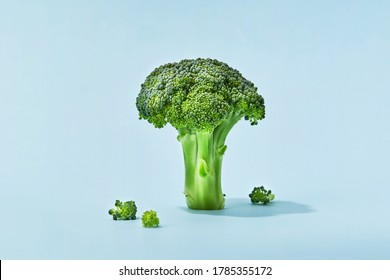 Broccoli sprig on colored background, asparagus cabbage isolated. Perfect Sprig of Fresh Broccoli