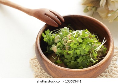 broccoli sprout in wooden bowl for healthy salad image