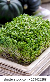 Broccoli sprouts in bamboo plate