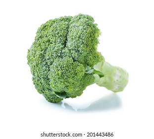 broccoli still life on a white background