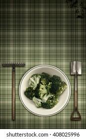broccoli vintage scene