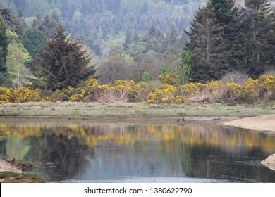 Brodick, located on the Isle of Arran - Scotland