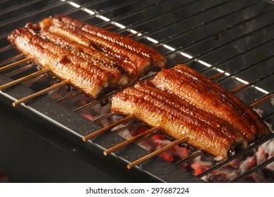 broiled eel