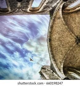 Broken Abbey. Bird flying over an old Abbey ruin.