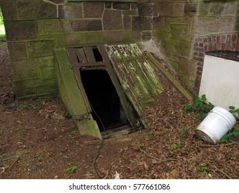 Broken bilco doors leading to a spooky basement.