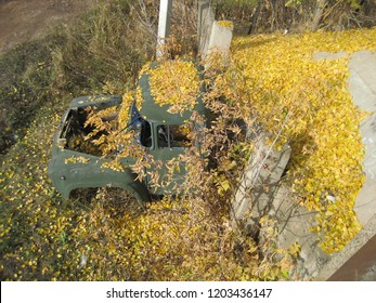 broken cabin of an old Soviet truck under yellow foliage
