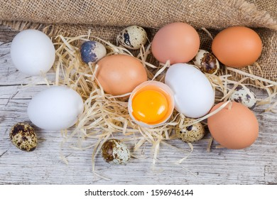 Broken chicken egg in eggshell among the whole brown and white chicken eggs and quail eggs on the old cracked wooden surface with wood wool and sackcloth, top view