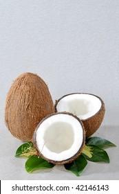 Broken coconut with green plant