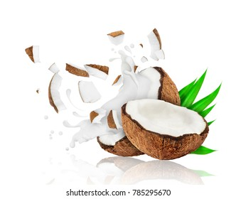 Broken coconut into two pieces with milk splashes, isolated on white background