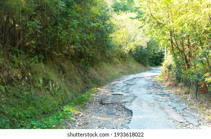 Broken country road with many potholes through the forest. Corsica, France