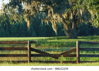 Broken farm ranch four board wood fence in front of green pasture field in the Southern countryside