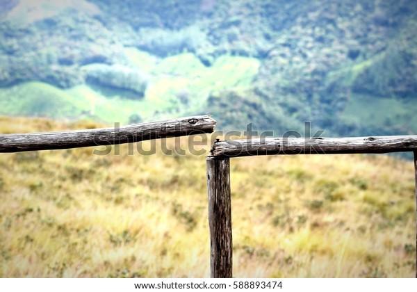 A broken fence