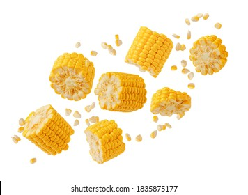 Broken flying sweet corn cob with grains isolated on white. Design element for product label, catalog print.