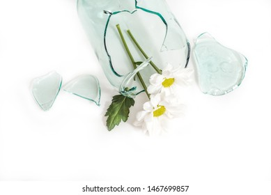 broken glass, a flower in a broken vase. The concept of unhappy love, grief and tears. copy space