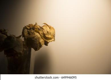 Broken Heart - Dried rose in a glass