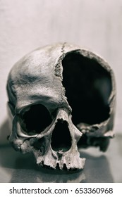 Broken human skull close up. Toned image