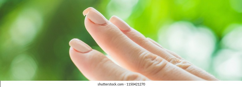 Broken nail on a woman's hand with a manicure on a green background BANNER, long format