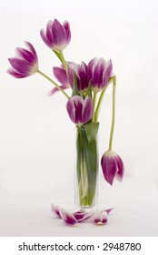 "A broken tulip ""spoils"" an arrangement"