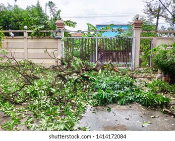 Broken wood by storm fall to the gate door and destroy iron parking gate