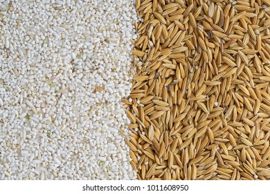 broken-milled rice and paddy  for background.