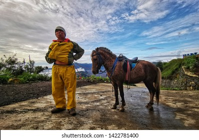 Bromo Indonesia, 15 May 2019  - Unidentified Horse rider standing waiting for a tourist to ride his horse
