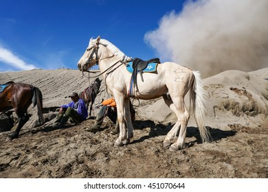 BROMO, INDONESIA - 27 JUNE 2016; Unidentified local people or Bromo Horseman waiting for customers at the mountainside of Mount Bromo, Semeru, Tengger National Park, Indonesia.