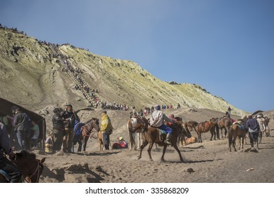 BROMO JAVA,INDONESIA - OCT 13,2015 : Horse riding service around Bromo Tengger Semeru National Park, East Java, Indonesia.
