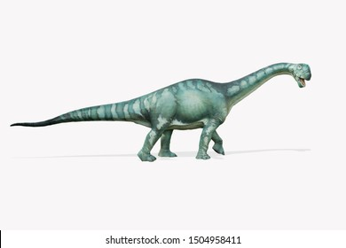 Brontosaurus isolated on white background. Brontosaurus is an herbivore dinosaur lived in jurassic period