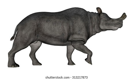 Brontotherium or megacerops dinosaur walking isolated in white background - 3D render