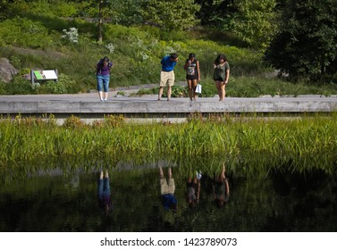 The Bronx, New York / USA - August 13, 2017: Family looks down at their reflections in a garden pond
