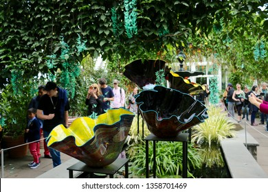 Bronx, NY - May 14 2017: Dale Chihuly's Macchia Forest glass pieces on display at the New York Botanical Garden