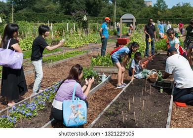 Bronx, NY/USA- August 17, 2014: Diverse children and adults observe a seed planting exhibition in one of the educational gardens at the Bronx Botanical Garden.