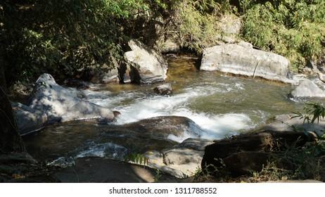 Brook, creek, and stream