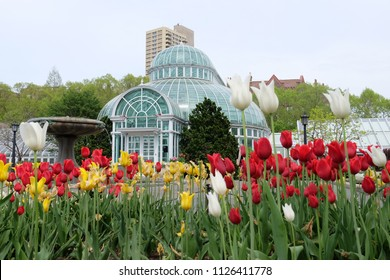Brooklyn Botanic Garden conservatory and plant in New York City, U.S.A