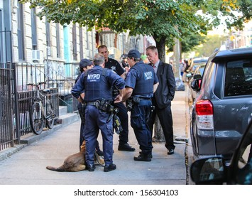 BROOKLYN, NEW YORK - SEPTEMBER 29 2013: Investigators & K9 units from the 68th Precinct search apartments for the suspect in the fatal stabbing of Giovanni Rodriguez September 29 2013 in New York City