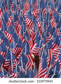 BROOKLYN, NY - SEPTEMBER 12: 343 American Flags in the memory of FDNY firefighters who lost their life on September 11, 2001 at home based memorial in Brooklyn on September 12, 2013