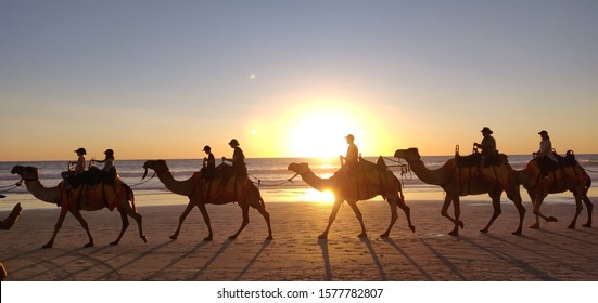 Broom/Australia - 20.08.2019: Camel ride tour on the beach during sunset