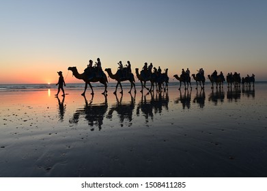 BROOME , WA - SEP 18 2019:Tourists on camel ride convoy on Cable Beach.Camels were first introduced to Australia last century mainly in Western Australian goldfields in the 1890s to transport goods.