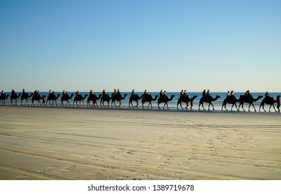 Broome Western Australia, Australia 5/3/2019.  Tourist riding camels at sunset at a Cable Beach