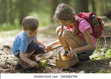 Brother and sister crouching in forest together to pick mushrooms