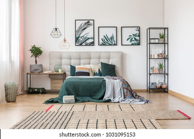 Brown, asymmetrical carpet and botanical posters on the wall in comfy bedroom interior