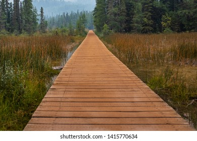 Liard River Hot Springs Provincial Park Images, Stock Photos