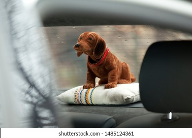 brown bobble head dog is sitting in the parcel shelf of a car