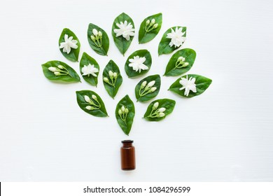 Brown Bottle of essential oil with jasmine flower and leaves on white background.