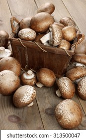 Brown cap mushrooms in bast basket and around on rustic wooden background.